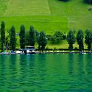 Green Lake Locarno (Swiss) by vivendulies