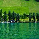 Green Lake Locarno (Swiss) by vivendulies