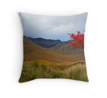 An Autumn Sycamore, Scotland.  Throw Pillow