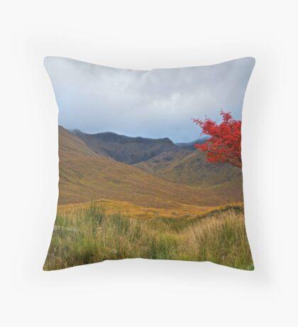 An Autumn Sycamore, Scotland.  Throw Pillow