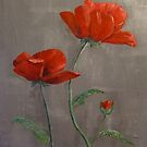 Poppies by Linda Ridpath