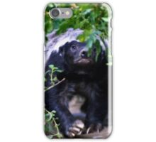 Coming through the undergrowth iPhone Case/Skin
