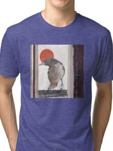 Red Sun Ball Tri-blend T-Shirt