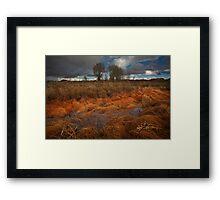 Marsh Melt Framed Print