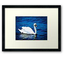 White Swan  VRS2 Framed Print