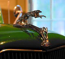'36 Ford Mascot by John Schneider