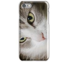 Cat iPhone Case/Skin