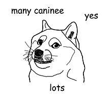 """""""Caninee"""" Meme Design (Premier Meme Collection) Photographic Print"""