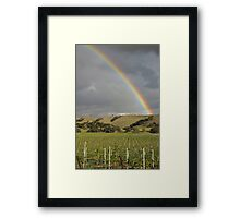 Vineyard Rainbow Framed Print