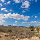 desert at baja california by dubassy