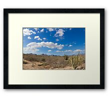 desert at baja california Framed Print