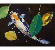 Kumonryu Koi Art Photographic Print