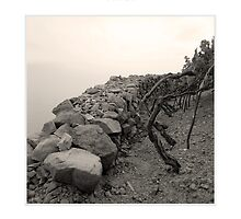Vineyards and Dry Stone Wall by MassimoConti
