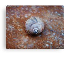Snail House  VRS2 Canvas Print
