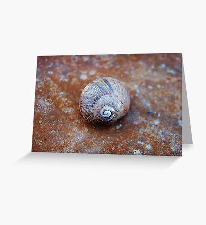 Snail House  VRS2 Greeting Card