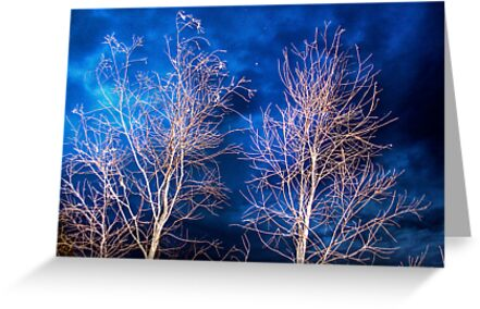 Night Glow - Mypolonga, near Murray Bridge, SA by Mark Richards