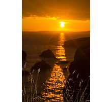 beautiful sunset over the coastal rocks with wild highl grass Photographic Print