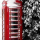 Telephone box by Rachel Down