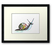 Funky Moustache Snail Framed Print