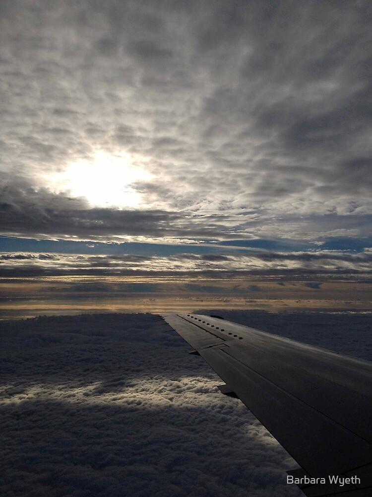On My Way Home by Barbara Wyeth