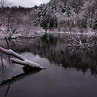 Calm Winter River by Phillip DePetro