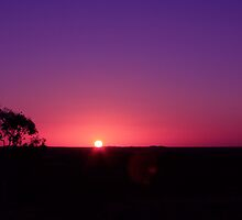 """Day 28 