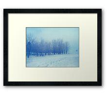 Blue Woodland Framed Print