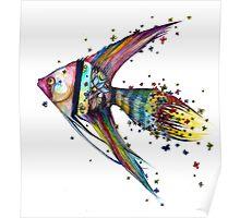 Angel Fish Poster