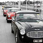 Starting Grid at Sandown by tonyshaw