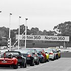 Starting Line at Sandown by tonyshaw