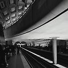 Smithsonian Subway by Robin Black