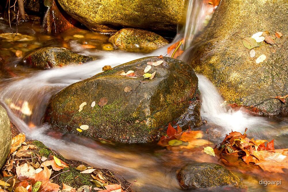 Waterfall by digoarpi