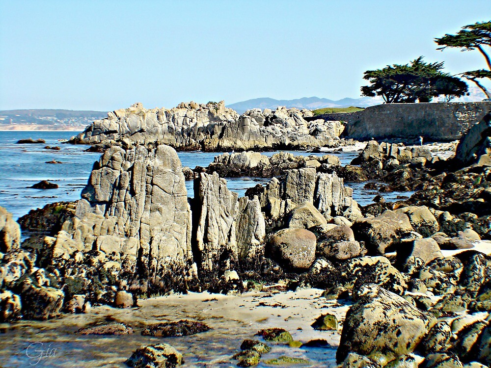 """""""The Rocks of Lover's Point"""" by Gail Jones"""