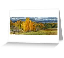 Autumn Splendour - Tumut NSW Australia - The HDR Experience Greeting Card