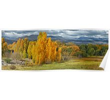 Autumn Splendour - Tumut NSW Australia - The HDR Experience Poster