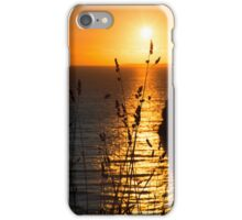beautiful sunset over the virgin rock grass iPhone Case/Skin