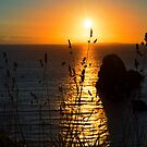 beautiful sunset over the virgin rock grass by morrbyte