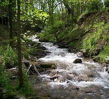 Shepherdstown West Virginia Waterfall by imperfectlizzie