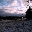 Dawn of Winter by Robert Merriam