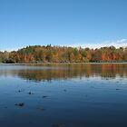 Autumn Lake by Robert Merriam