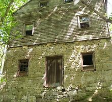 Abandoned house lost in the woods by imperfectlizzie