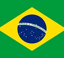 Brazil Flag by PingusTees