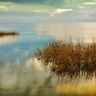 Two Alone in Pamlico Sound II by Dan Carmichael