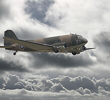 Dakota DC3  - Aerial Workhorse by Pat Speirs