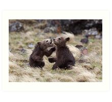 Grizzly Bear Cubs - Twins!  Yellowstone National Park Art Print