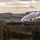 The Watercress Line by PhotoLouis