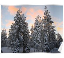 Lapland sunset Poster