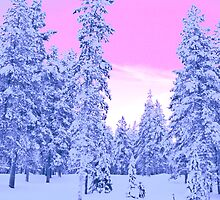 Pink Sky, Lapland by Tim Topping