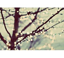 tree of lights Photographic Print