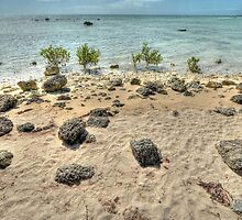 St Andrews Beach at Yamacraw on Eastern Nassau, The Bahamas by Jeremy Lavender Photography